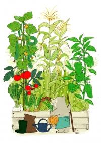 寄せ植え野菜