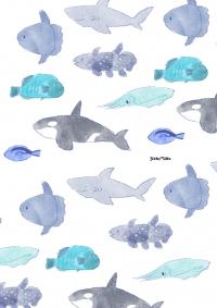 海の生き物2